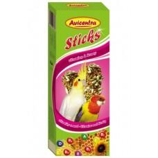 Tyčinky pro malé papoušky s vitamíny a medem