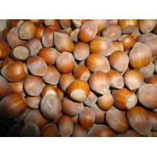 Lískové ořechy - 0,5kg